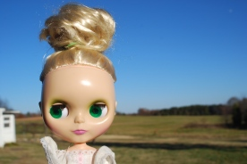 blythe doll in the country by brooke gibbons