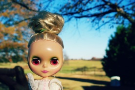 blythe doll on thanksgiving by brooke gibbons