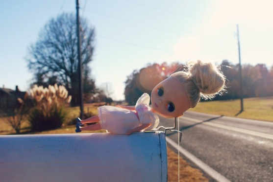 blythe in the country by brooke gibbons